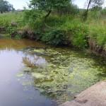 Бетонная плотина 15