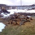 Заготовка дров 5