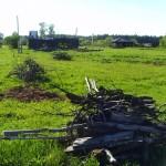 Заготовка дров 7
