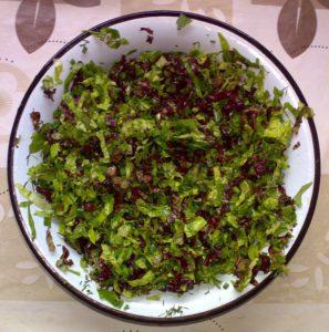 Листья красного и зелёного салата, шпинат, лук шнитт, укроп