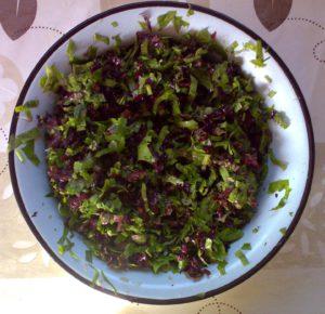 Лист красного салата, шпинат, редис
