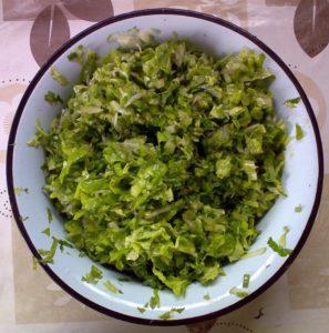 огурец, листья сныти и зелёного салата, перья чеснока