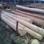 Как ошкурить лес 2