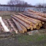 Как ошкурить лес 3