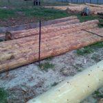 Как ошкурить лес 4