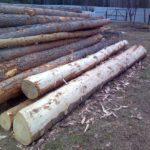 Как ошкурить лес 5