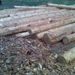 Как ошкурить лес 6